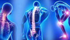 با علائم بیماری فیبرومیالژیا ، راه تشخیص و درمانش آشنا شوید
