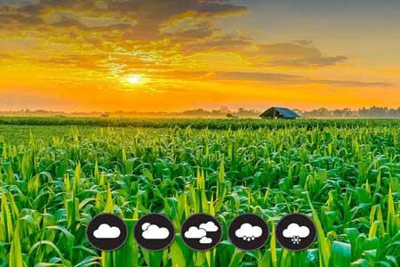 هشدار هواشناسی به کشاورزان و شالیکاران