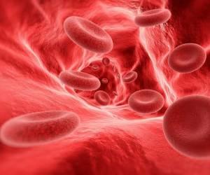 معجون معجزه گر طب سنتی برای درمان کم خونی