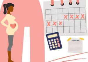 چگونه برای لقاح و بارداری برنامهریزی کنید؟