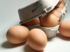 محصولات غذایی بدون تاریخ انقضا را بهتر بشناسید