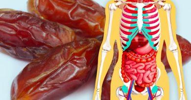 اگر روزی سه عدد خرما بخورید چه اتفاقی در بدنتان میافتد