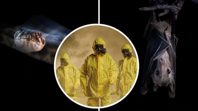 ۱۰ تفکر نادرست در مورد ویروس «کرونا»