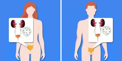 ۸ بیماری که تأثیرات متفاوتی در زنان و مردان دارند