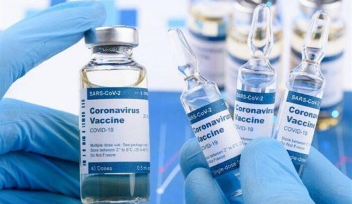 واکسن ایرانی کرونا در فاز تست حیوانی موفق شد