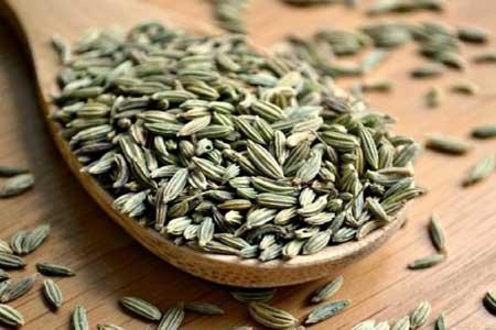 تاثیر قابل توجه گیاه رازیانه در درمان عفونت کرونا