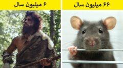 حیواناتی که خیلی قبل تر از انسان روی کره زمین بوده اند