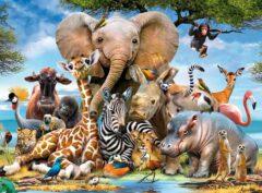 کدام حیوانات مبتلا به کرونا می شوند؟ (عکس)
