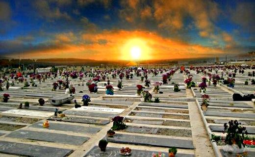 آیا مردگان از ظهر پنجشنبه تا ظهر جمعه آزاد هستند و به خانواده خود سر می زنند؟
