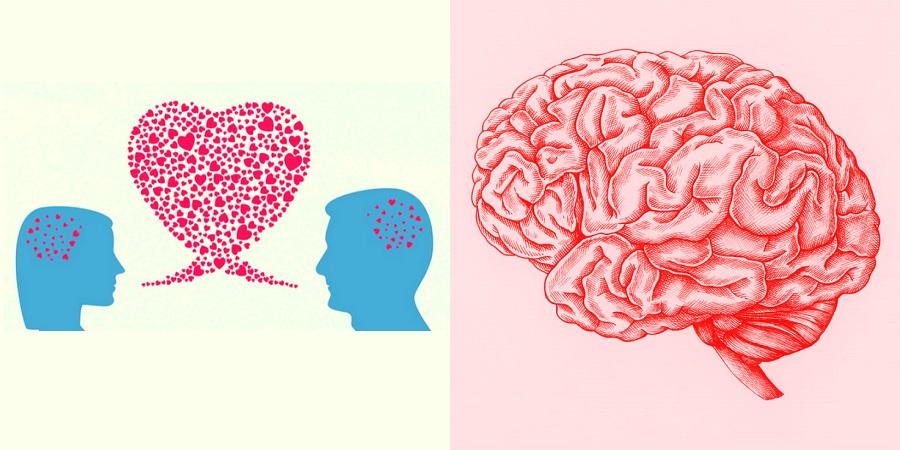 هنگام تجربه ارگاسم دقیقاً چه اتفاقی در مغز می افتد؟