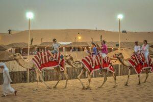 تصویری/بهترین تجربه های گردشگری در سال ۲۰۲۰ به انتخاب Tripadvisor