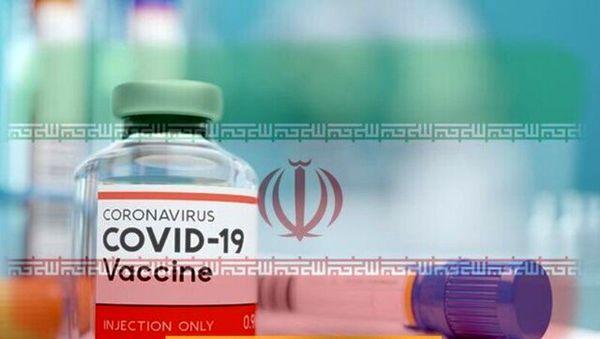 آزمایش موفق واکسن ایرانی کرونا/فیلم