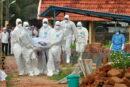 ویروس نیپاه با میزان کشندگی ۷۵ درصد