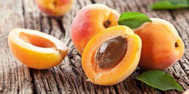 نگاهی به فواید و مضرات مصرف «زردآلو»؛ بالاخره هسته زردآلو را بخوریم یا نخوریم؟