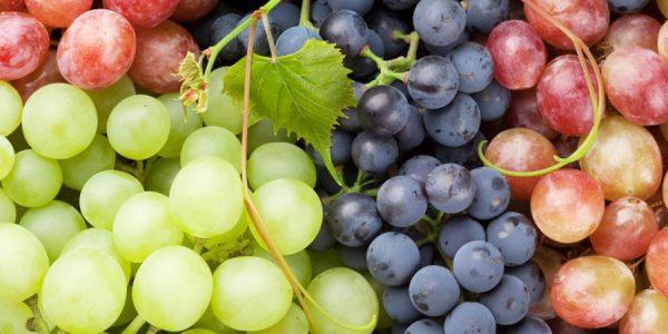 با فواید و مضرات مصرف «انگور» آشنا شوید