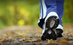 تاثیر شگفت انگیز پیاده روی بر افزایش طول عمر