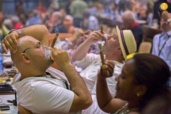 جشنواره سالانه سیگار برگ +تصویری