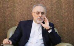 استنکاف صالحی از اجرای قانون لغو تحریمها محرز شد