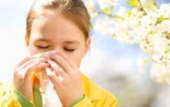 چگونه آلرژی پاییزی را کنترل کنیم؟
